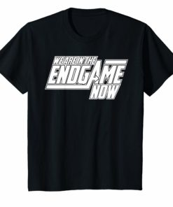 We Are In The Endgame Now Superhero Themed Shirt