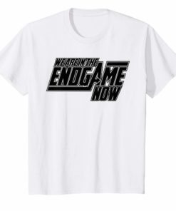 We Are In The Endgame Now Superhero Themed TShirt