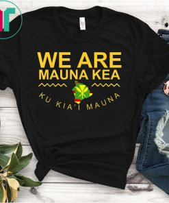 We Are Mauna Kea T-shirt - DEFEND Mauna Kea TShirt